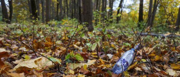Pollution plastique en foret